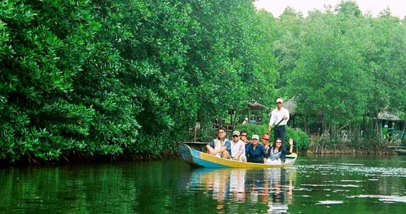 EXPLORING CAN GIO MANGROVE FOREST BY SPEEDBOAT
